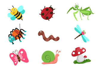insect character design