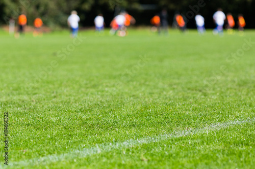 soccer players are enjoying sex on the green field  54300