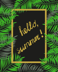 Hello, summer frame. Tropical vector background with place for text