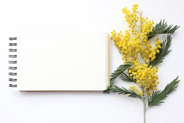 Spring Mimosa Mockup. Post blog social media.