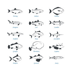 Seafood icons. Fish icons