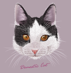 Vector Illustrative Portrait of Young Domestic Cat