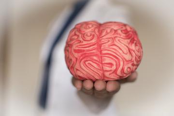 Cuidados del cerebro, desarrollo personal