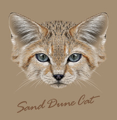 Vector Illustrative Portrait Sand Dune Cats