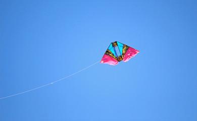The kite on blue sky background