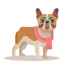 French bulldog. Vector flat cartoon illustration