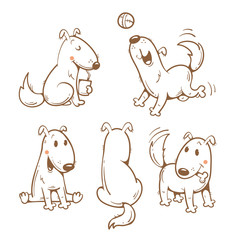 Cartoon funny dogs set. Vector image. Cute  puppy in different poses. Contour image.