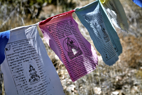 Buddhist prayer flags hanging from tree to tree blowing in the wind