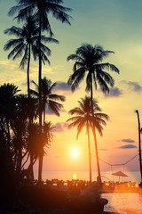 Tropical coast during beautiful sunset.