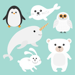 Arctic polar animal set. White bear, owl, penguin, Seal pup baby harp, hare, rabbit, narwhal, unicorn-fish. Kids education cards. Blue background. Isolated. Flat design.