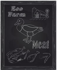 young beautiful duck on a scheme and eco meat