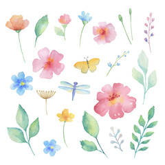Watercolor set of flowers.