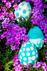 Easter eggs on flowering meadow. selective focus