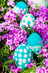 Easter eggs on flowering meadow. selective focus