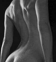 Fine Art Nude of Woman's Wet Back and Bottom