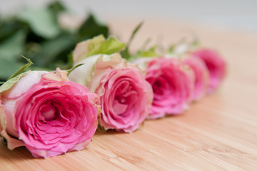 Arranged pink roses