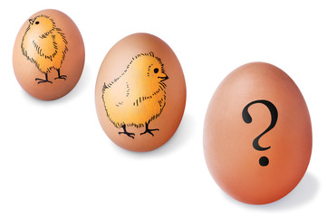 Brown eggs with painted chickens and question mark, isolated on white.
