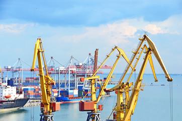 Port cargo crane and ship