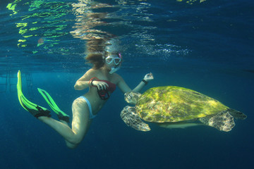 Young woman swims with sea turtle
