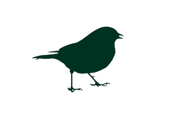 Bird Silhouette  - green