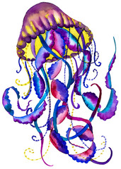 Abstract watercolor painting jellyfish. Colored medusa Illustration isolated on white background, element tattoo design.