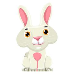 Illustration of Rabbit Cartoon