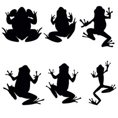 Vector frogs silhouette on the white background. Six frog silhouettes. Collection of vector frogs silhouette isolated. Vector silhouettes of frogs , top view
