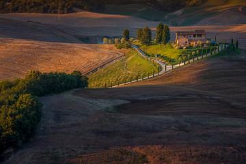 Italy, Tuscany, Siena, Asciano, Crete Senesi