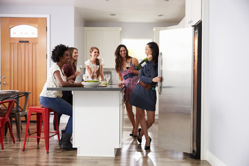 Group Of Female Friends Enjoying Pre Dinner Drinks At Home