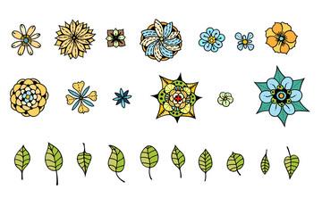 various flowers, leaves