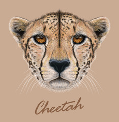 Vector Illustrative Portrait of a Cheetah