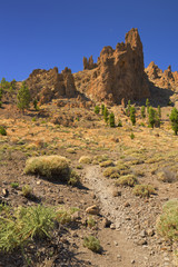 Volcanic landscape in the Teide National Park on Tenerife