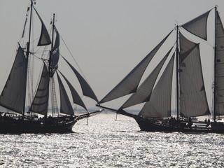 Segelschiffe im Gegenlicht
