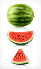 Watermelon, vector icons set