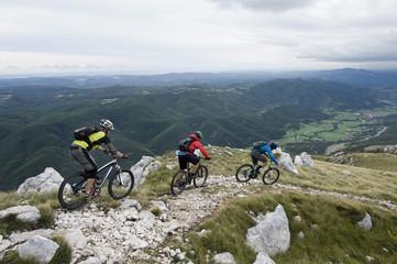 Slovenia, Istria, Vipava valley, Nanos, three mountain bikers looking at view