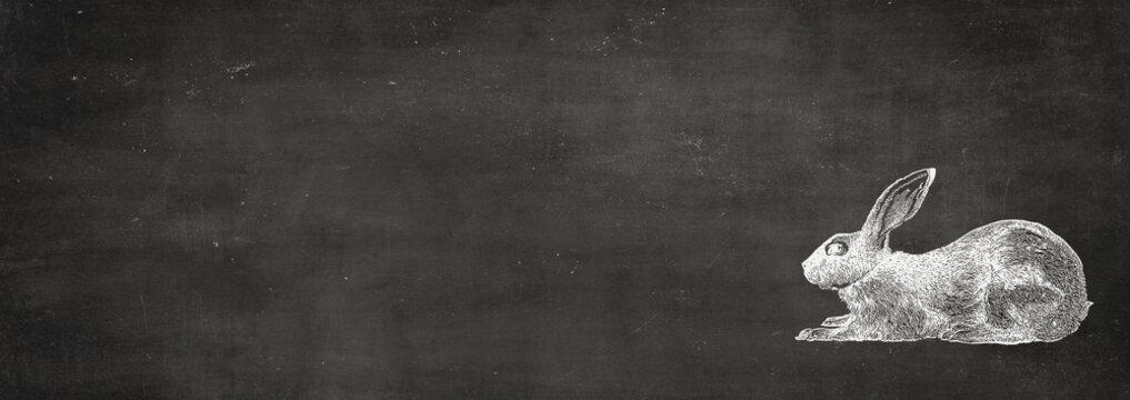 silhouette rabbit on blackboard - retro look - for Easter - banner