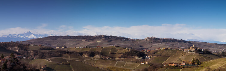 Wall Mural - Panoramic view of Langhe vineyards in winter