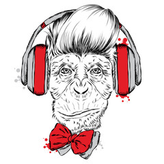Monkey with headphones. Monkey vector. Hipster.