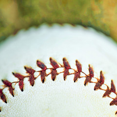 BASEBALL by Vanessa Mathisen