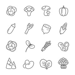 Lines icon set - vegetable vector illustration