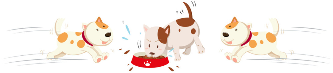 Dogs eating and running around