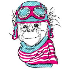 Monkey wearing a helmet. Cute little monkey. Monkey pilot. Racer. Biker.