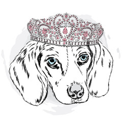 Cute puppy vector. Puppy in the crown.