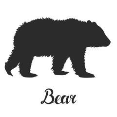 Silhouette bear on white background. Vector illustration