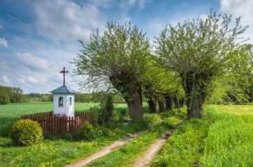 Kapliczka przy wiejskiej drodze, Mazowsze, Polska