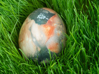Easter Dekoration with colorful egg in grass