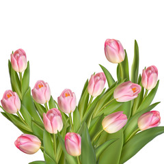 Bouquet of tulips. EPS 10