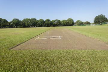 Cricket Pitch Wickets Field