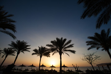 Beautiful sunset at a beach resort in tropics with palms and wat