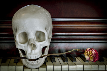 Skull Rose Piano